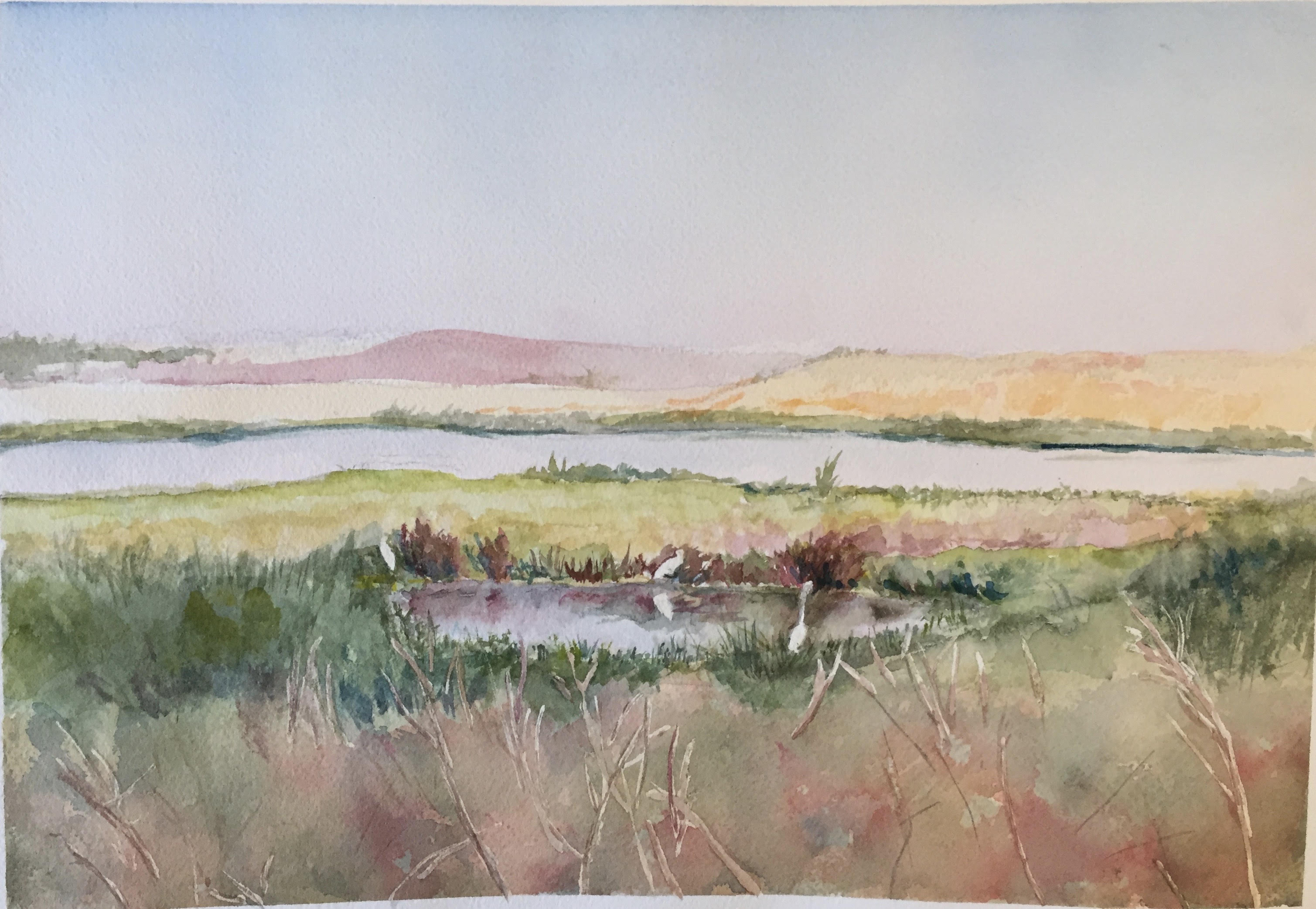 Bay Lands from Palo Alto - MBEarly